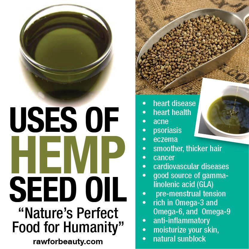 WHICH IS BETTER CBD OIL OR HEMP SEED OIL?